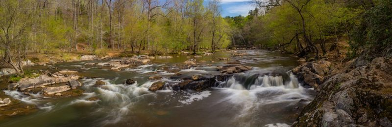 Spring on the Eno by Michael Little